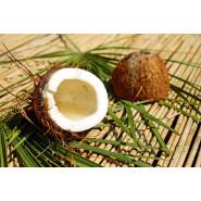 Lait de coco en poudre 100g