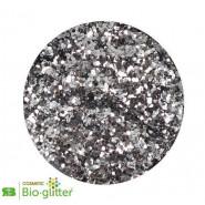 Glitter Argent étoilé 040