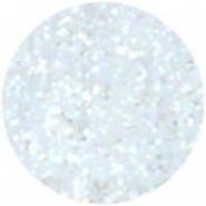 Glitter Poussière de fée 015