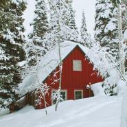 Fragrance Cabane de Noël