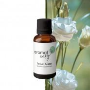 Fragrance Musc Blanc