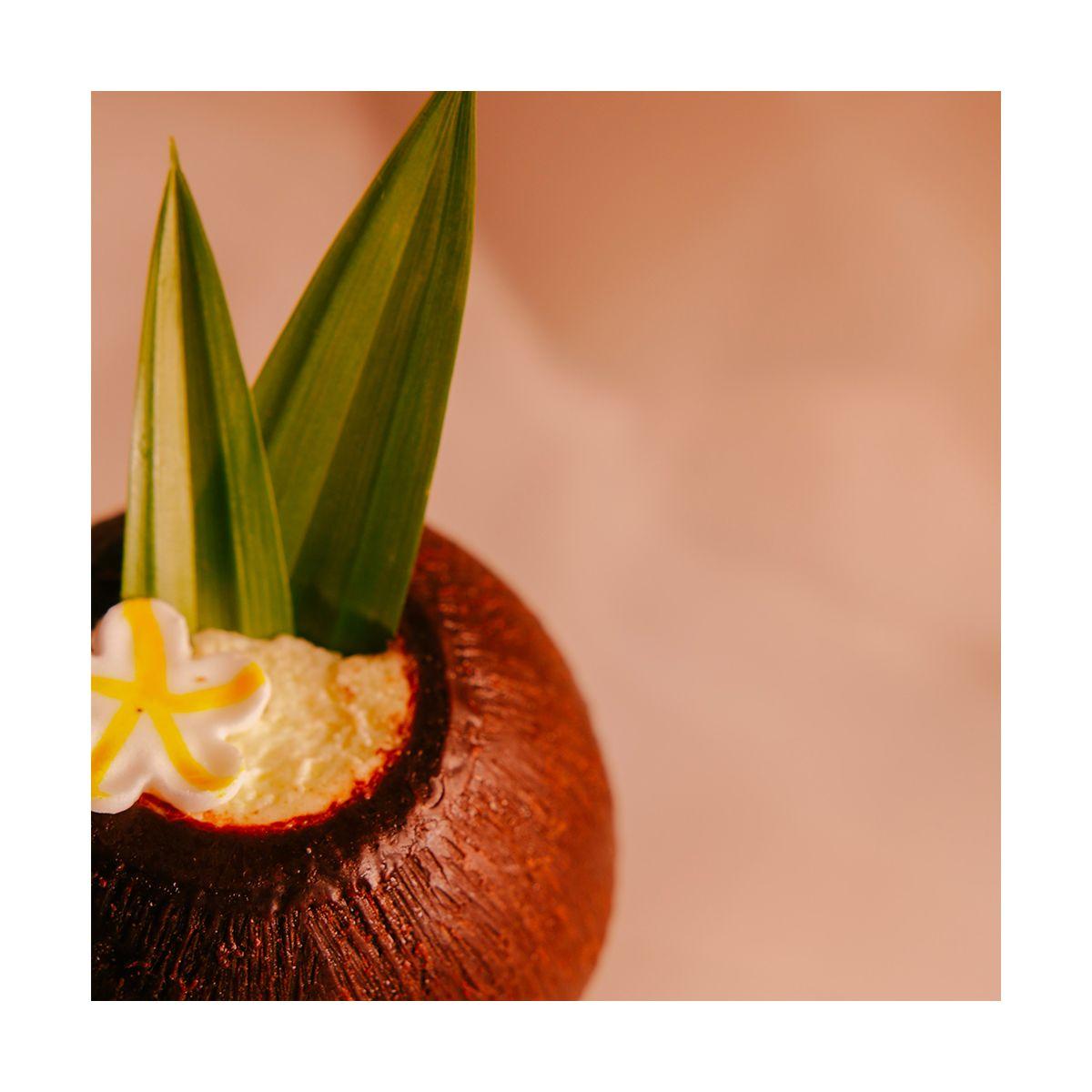 Fragrance Coco Citronnelle