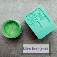 Mica Bourgeon